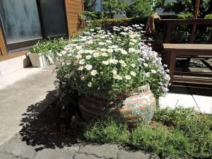 見事!美幸ひなたさんのカバンの陶器に咲く草花