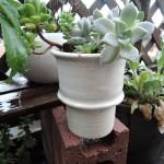 オブジェとして。モノエ(monoe)さんの白い鉢。
