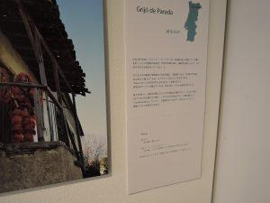 藤原暢子写真展 北へ||-ポルトガルの村祭-
