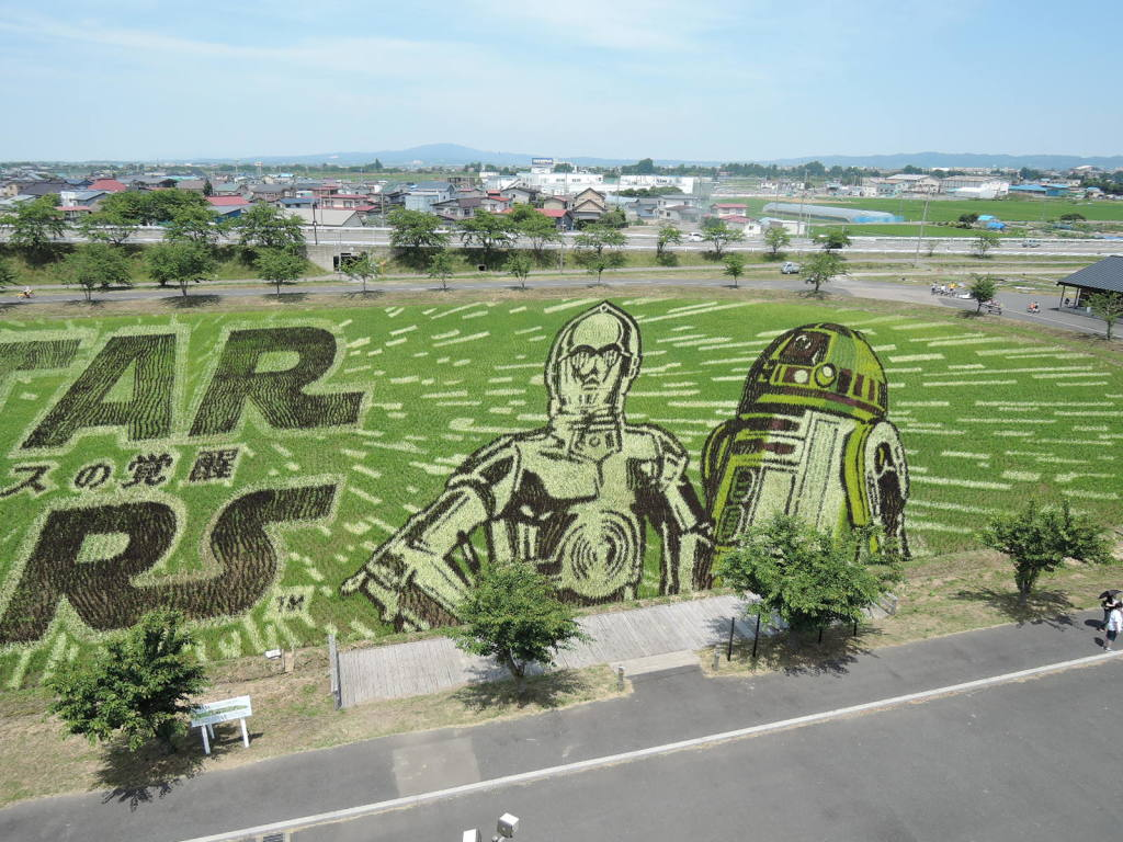 平川市田圃アート風景