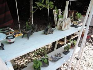 三尾忍さんのブースに並ぶ植物鉢