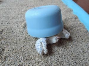 前川幸市さん陶展「海のかけら」の展示風景