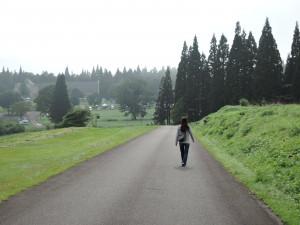コスモス畑からの道 開場前の遠景