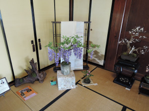 稲松由恵さん造形盆栽の作品