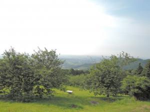 愛宕山山頂からの景色